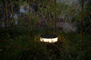 چراغ دفنی - نوران